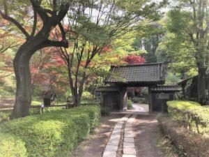 薬師池公園の門1