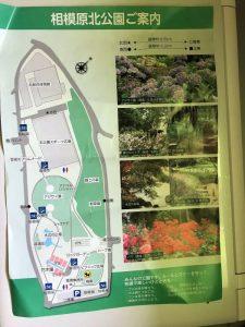 北公園地図