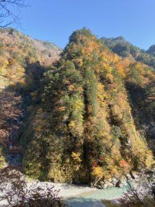 鐘釣駅周辺の紅葉
