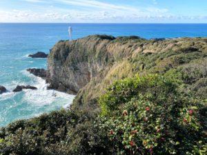 足摺岬灯台と椿