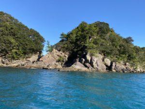 シコロサンゴ生息地付近