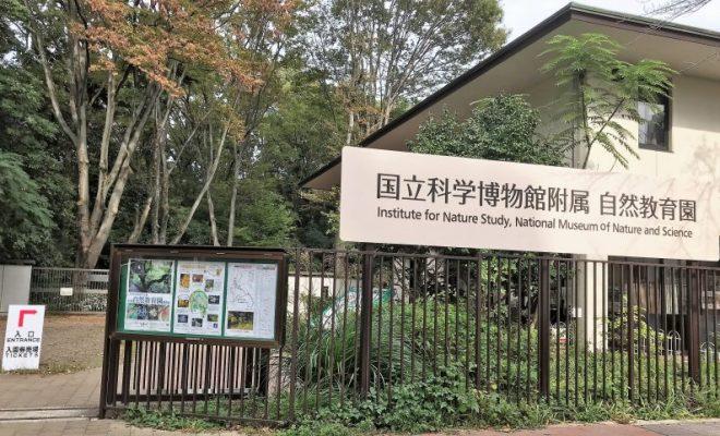 国立科学博物館 附属自然教育園