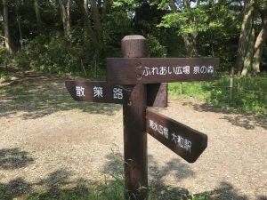 引地川散策