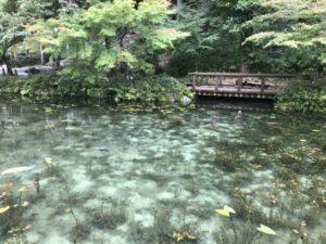 根道神社の池