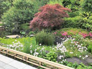 長谷寺庭園1