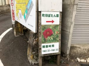 町田ぼたん園の道2
