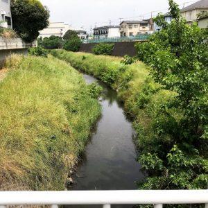 県道52号小川